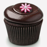 cupcake-personality-03-chocolate-squared-sl